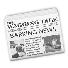 The-Wagging-Tale-Newspaper-Top-5-dog-stories-of-week-Aug-18-2019