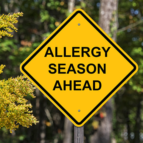 Allergy Season Ahead Sign for How to Prevent and Reduce the Effects of Summertime Dog Allergies