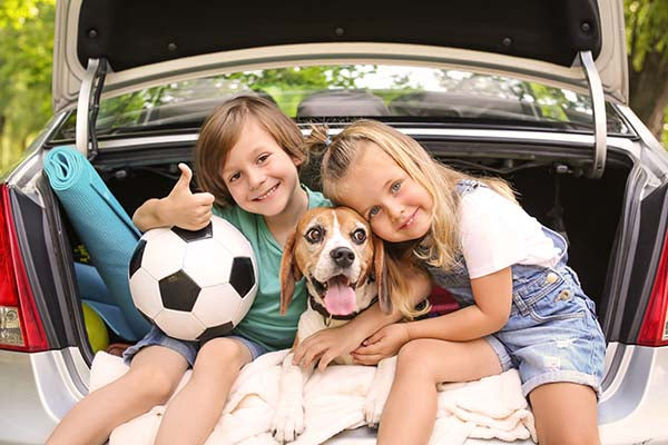 beagle with children in car ChewdUp