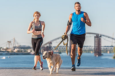 dog jogging with man and woman