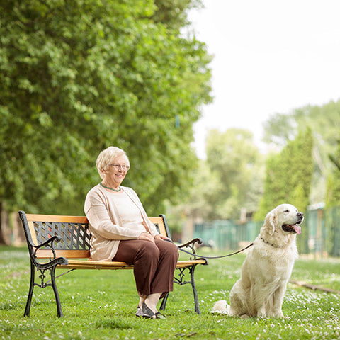 elderly woman in park with dog