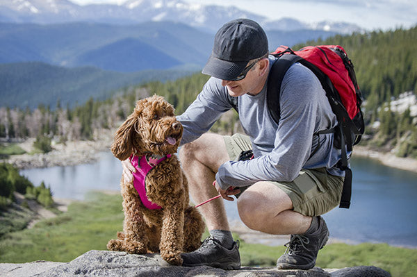 man hiking with dog taking a break