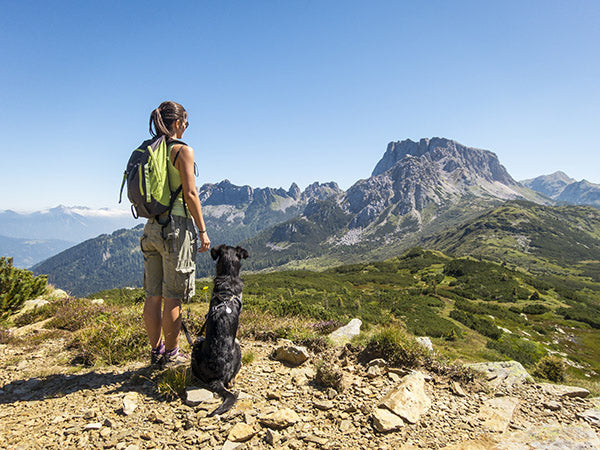 woman and dog hiking in mountains