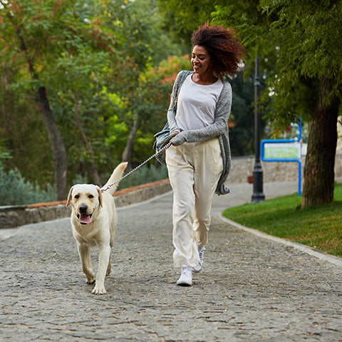woman walking dog in park