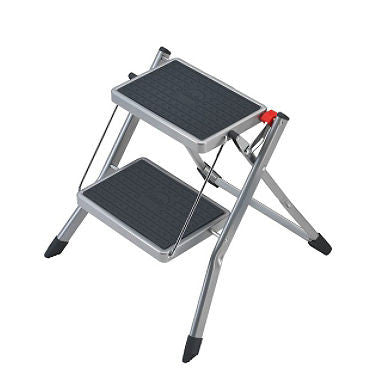 2-Step Mini Step Stool Color: Silver