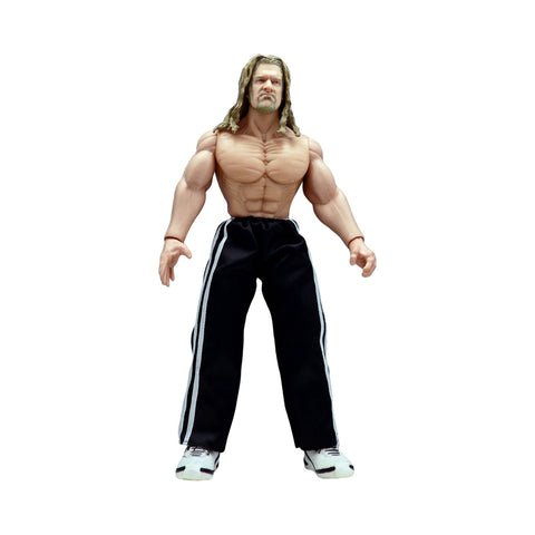"WWE 12"" Triple H (loose)"