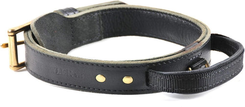 Simplicity Leather Collar W/Handle - M&W CANINE SHOP