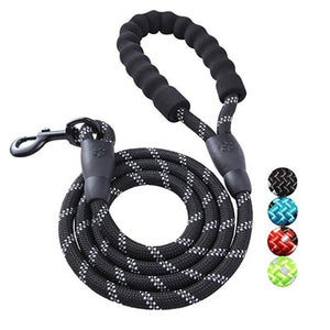 Climbing Rope Leash