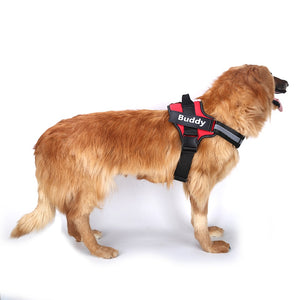 Harness W/Custom Patch - M&W CANINE SHOP
