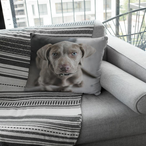 Personalized Pillow - M&W CANINE SHOP