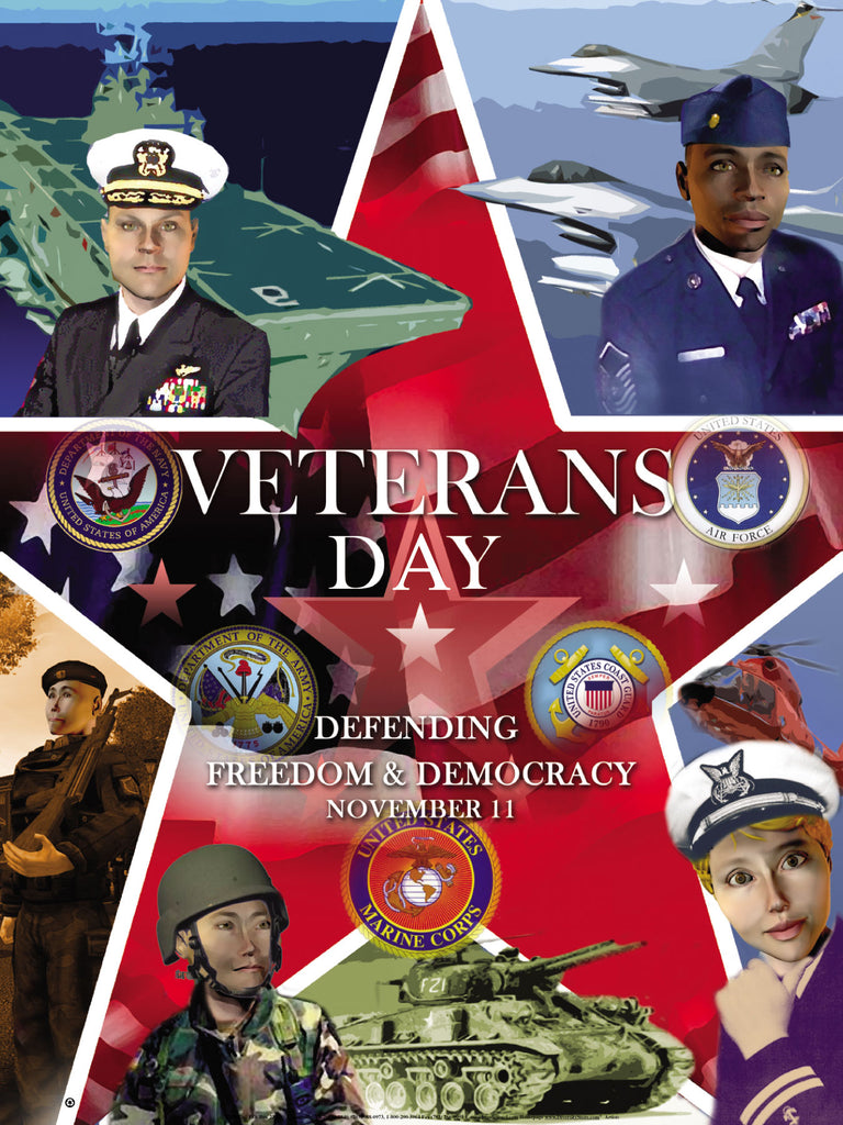 Veterans Day Poster Defending Freedom & Democracy (OM)