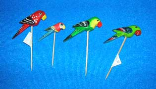 Parrot Toothpick  .. OM