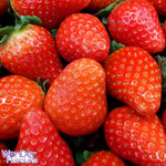 Strawberry (Juicy) SC - Flavour Concentrate - Wonder Flavours
