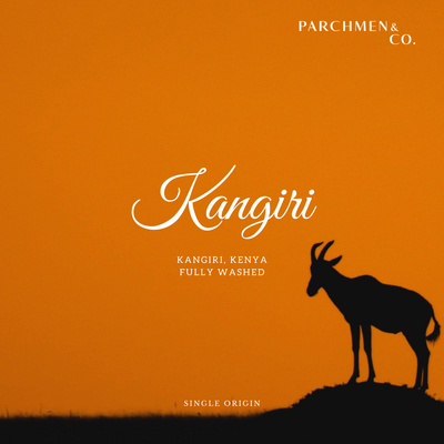 Kangiri Farm - Kenya (Limited Edition)