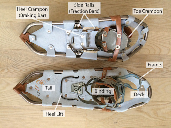 Anatomy of a Snowshoe