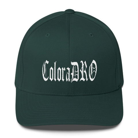 303zTreez Flex Fit Spruce / S/M ColoraDRO OL E Flex Fit Structured Twill Cap