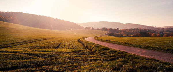 Tips for Driving on Rural Roads