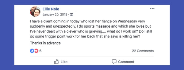 Client dealing with grief facebook post from Ellie Nole