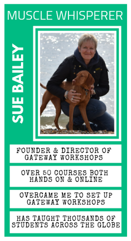 Sue Bailey GateWay Workshops