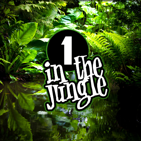 One In The Jungle - Kenny Ken - 10.08.1995 [Download]