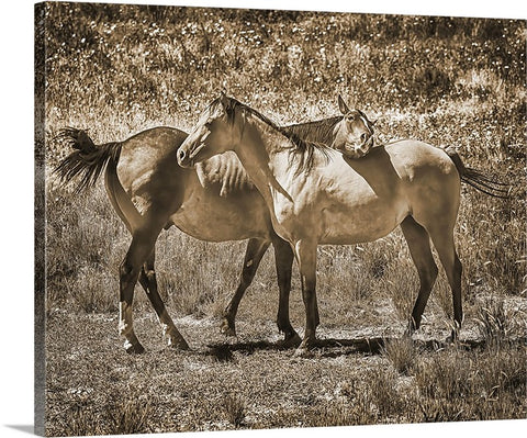 AHHHHH Sepia Canvas