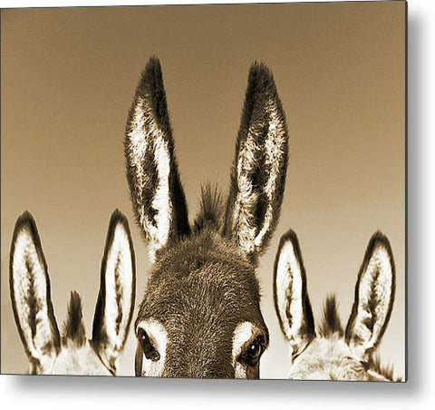 All Ears Sepia Metal Print