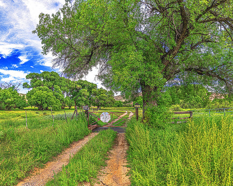 Back Road to Paradise, North of Jerome, Arizona Standard Art Print