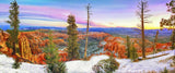 Bryce Canyon National Park, Utah Panoramic Metal Print