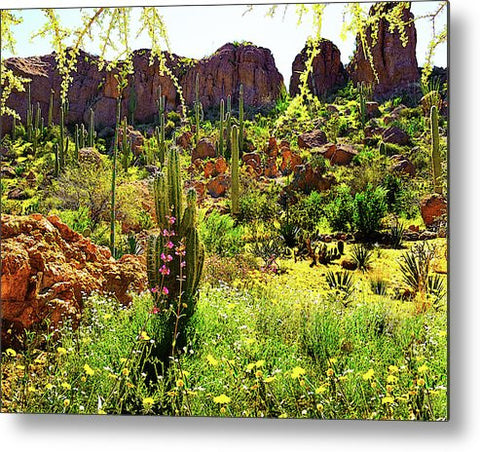 Can You Find the Hummingbird?  Horizontal Metal Print