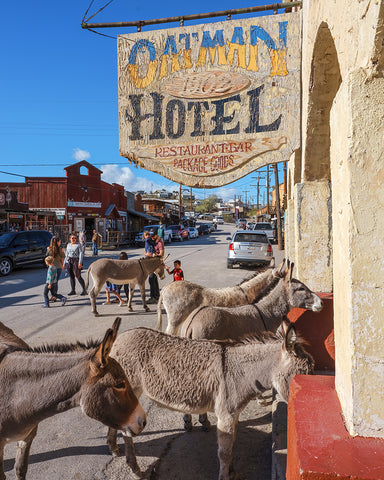 Oatman Hotel Check In, Arizona Metal Print