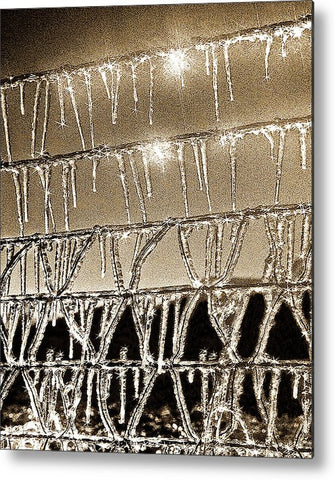 Icy Barb Wire Metal Print