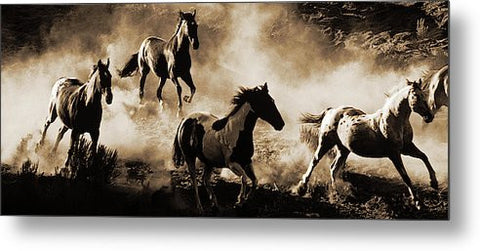 Morning Romp Panoramic Metal Print