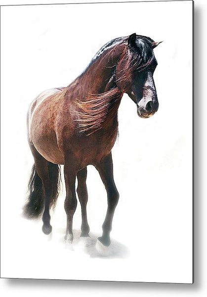 Noble and Proud Metal Print