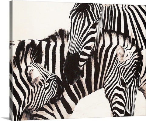 Zebras Canvas