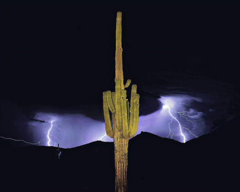 Arizona Monsoon Metal Print