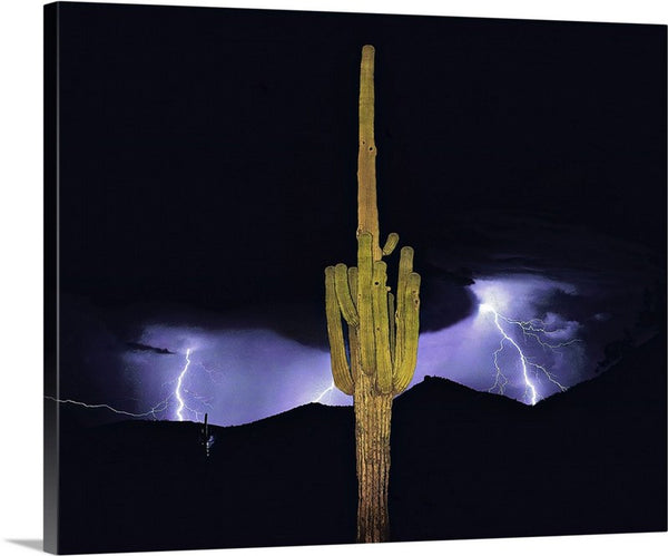 Arizona Monsoon, Sonoran Desert Canvas