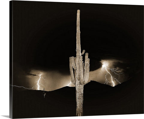 Arizona Monsoon Sepia, Sonoran Desert Canvas