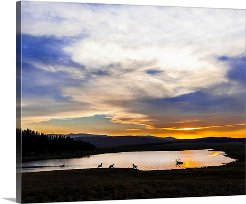 Crescent Lake Elk Canvas