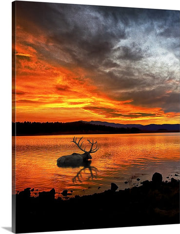 Big Lake Elk Vertical Canvas