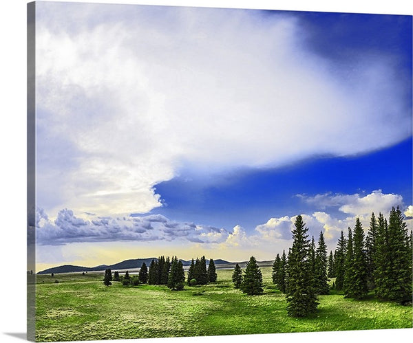 White Mountains Plateau Canvas