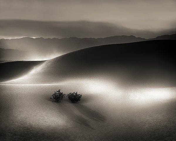 Blowing Sand, Death Valley National Park, California Standard Art Print