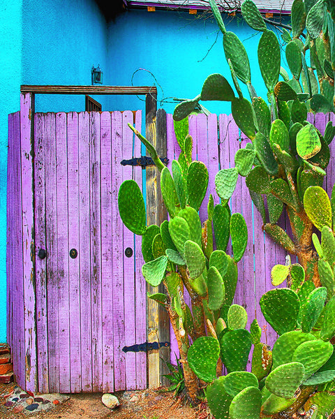 Blue and Purple Door Standard Art Print