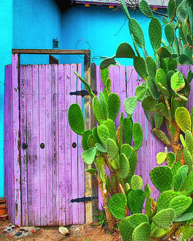 Blue and Purple Door, Tucson, Arizona