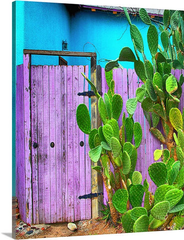 Blue and Purple Door Canvas