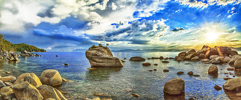 Bonsai Rock Panoramic Metal Print