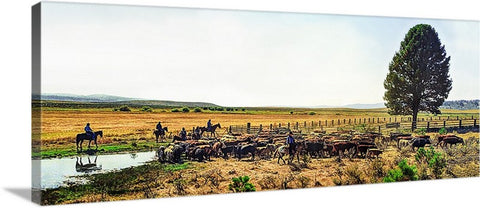 High Country Color Cattle Drive Panoramic Canvas
