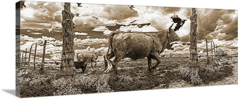 Cattle Fence Chino Valley, Arizona Sepia Panoramic Canvas