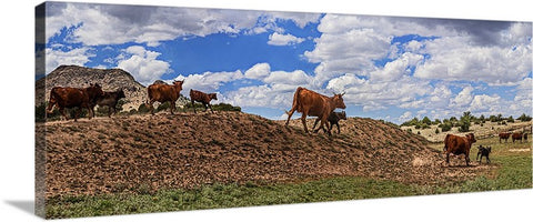 Cattle Hill Chino Valley, Arizona Panoramic Canvas