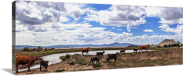 Cattle at the Watering Hole, Chino Valley, Arizona Panoramic Canvas