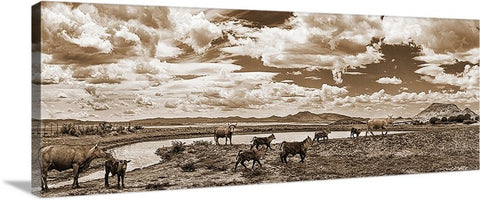 Cattle at the Watering Hole, Chino Valley, Arizona Sepia Panoramic Canvas